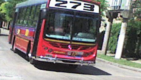 linea-273