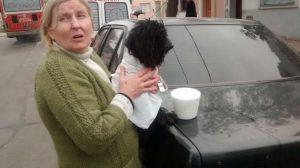 perro rescatado 3